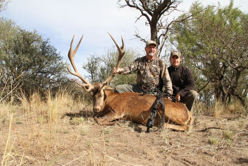 Red Stag Hunting (30)