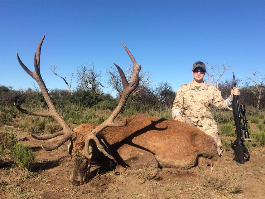 Red Stag Hunting (34)