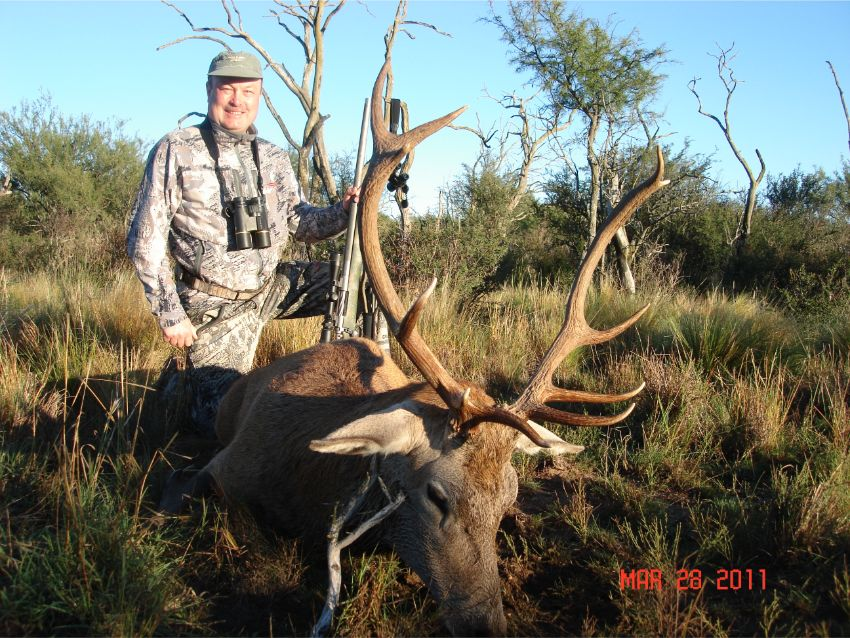 Red Stag Hunting (6)