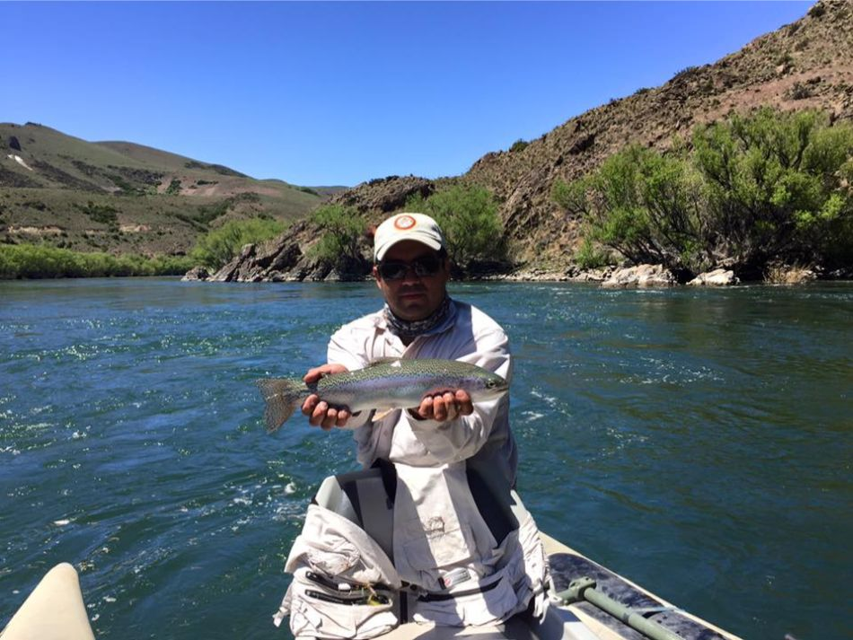 Trout Fishing Argentina (12)